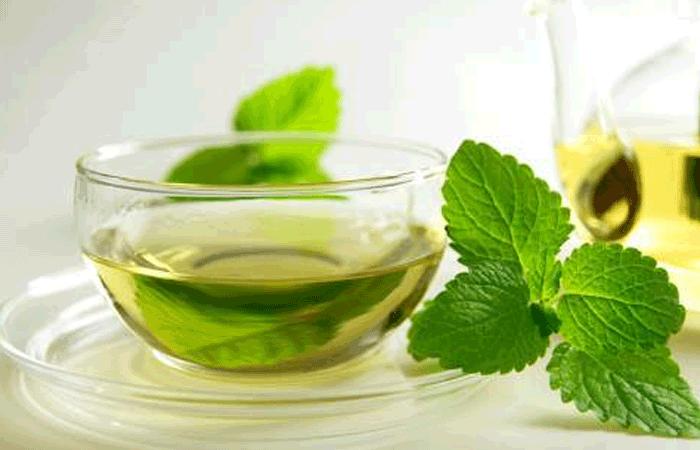 Mint Blend Herbal Tea